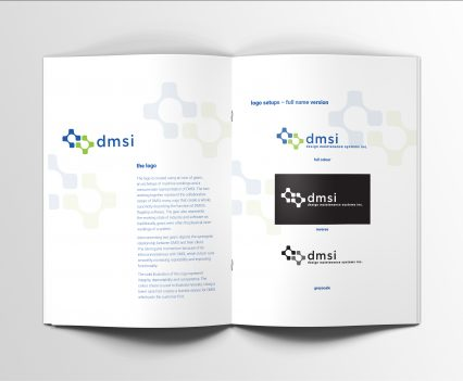 DMSI brand guide spread 2