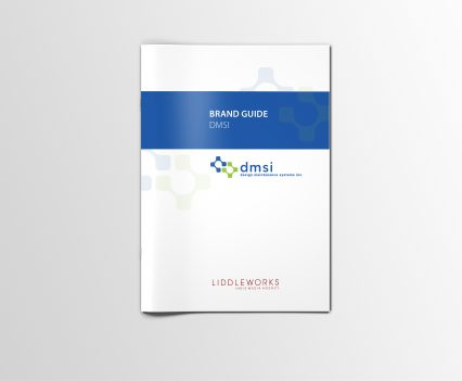 DMSI brand guide front