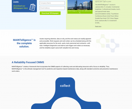 DMSI home page - Liddleworks
